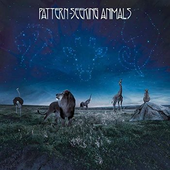 Pattern-Seeking Animals - Pattern-Seeking Animals - 2019.jpg